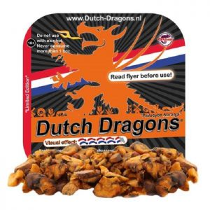 Dutch Dragons Psilocybe Naranja