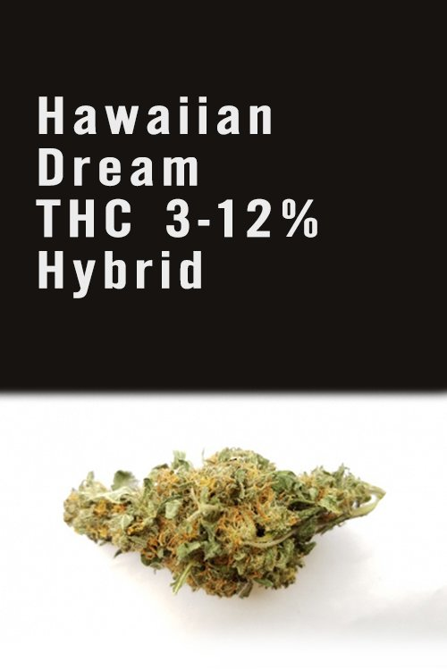 Hawaiian Dream THC 3-12% Hybrid Weed