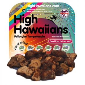 High Hawaiians Psilocybe Tampelandia