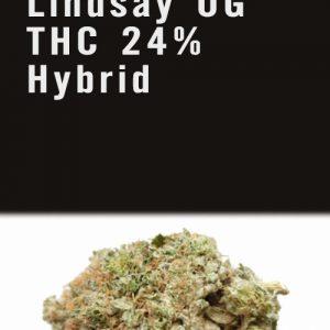 Lindsay OG THC 24% Hybrid