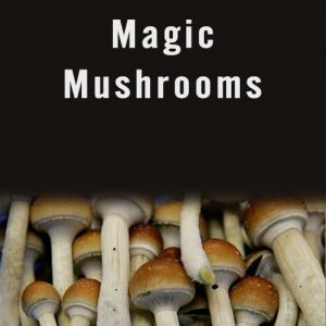 Magic mushrooms(10grams) online