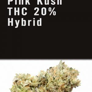 Pink Kush THC 20% Hybrid