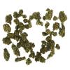 Sour Patch CBD Flower - 14.5% CBD