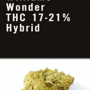 Williams Wonder THC 17-21% Hybrid